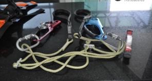 Foto de Prepara Seg Treinamentos em Botucatu, SP por Solutudo
