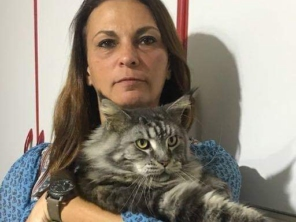 Foto de Bichos & Rabichos em Atibaia, SP por Solutudo
