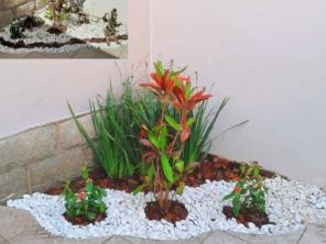 Revitalização de jardim