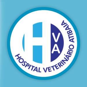 Hospital Veterinário 24 Horas
