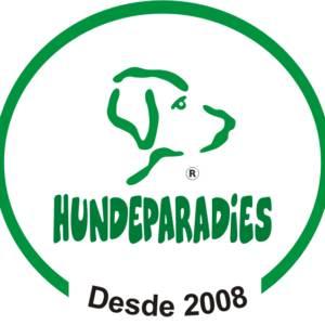 Hundeparadies Hospedagem e Recreação para Cães em Jundiaí, SP por Solutudo