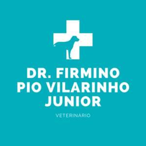 Dr. Firmino Pio Vilarinho Junior - Veterinário
