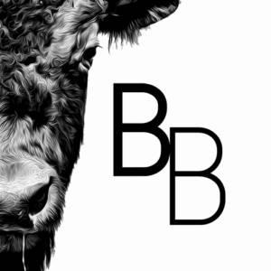 Bison Business: Fotos e Vídeos Encantadores para Negócios
