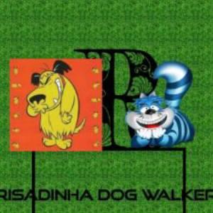 Marcos Santos - Dog Walker