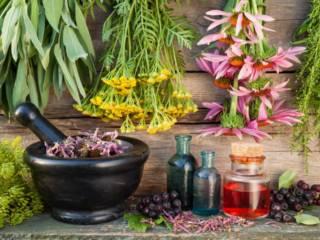 Como utilizar os Óleos Essenciais: Aromaterapia para Iniciantes