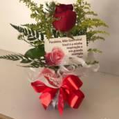 Rosa Vermelha na Água em Ourinhos, SP por Flor de lis - Floricultura e Presentes