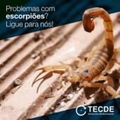 Controle de Escorpiões