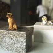 Crematório Pet