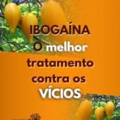 Tratamento de até 5 dias Home Care com Ibogaína contra dependência e ajuda também no combate à depressão.