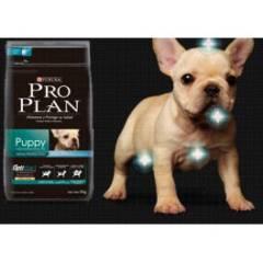 Ração Proplan Puppy 2kg