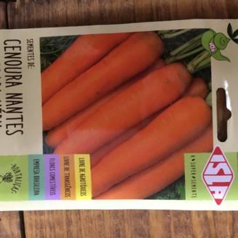 Comprar o produto de semente cenoura nantes calib med  em A Classificar em Botucatu, SP por Solutudo