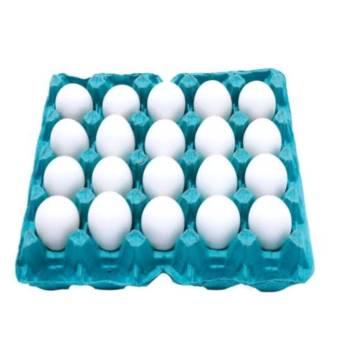 Comprar o produto de Cartela com 20 ovos extra branco em Alimentação Saudável em Botucatu, SP por Solutudo