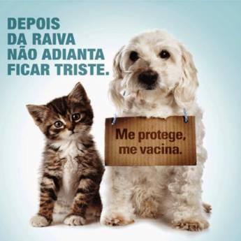 Comprar o produto de Vacina de Raiva Cães em Veterinário em Jundiaí, SP por Solutudo