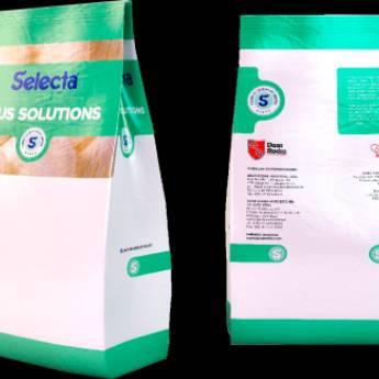 Comprar o produto de Base para Sorvetes Selecta  em Alimentos e Bebidas pela empresa Eloy Festas em Jundiaí, SP por Solutudo