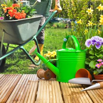 Comprar o produto de Jardinagem em Casa, Móveis e Decoração pela empresa HG Clean - Jardim e Piscina em Atibaia, SP por Solutudo