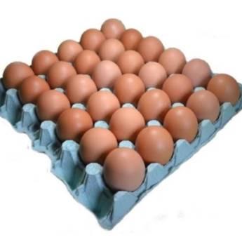 Comprar produto Cartela com 30 ovos extra vermelho em Alimentação Saudável pela empresa Atacadão dos Ovos Botucatu em Botucatu, SP