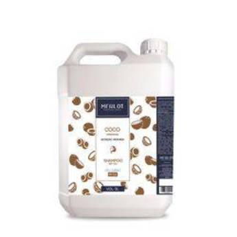 Comprar o produto de Shampoo Lavatório Merlot Coco 5 litros em Shampoo  em Araçatuba, SP por Solutudo
