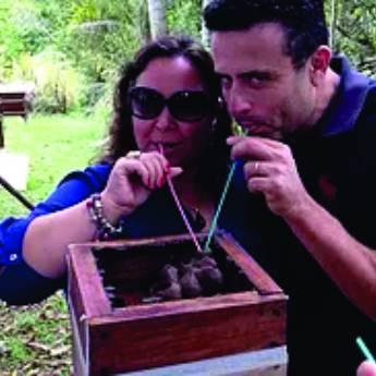 Comprar o produto de Educação Ambiental em Educação em Jundiaí, SP por Solutudo