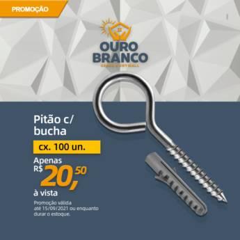 Comprar o produto de Pitão com Bucha 6mm em Gesso em Foz do Iguaçu, PR por Solutudo