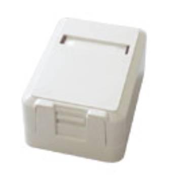 Comprar o produto de CAIXA SOBREPOR PVC BRANCA PARA KEYSTONE em Redes e Wi-Fi em Birigui, SP por Solutudo