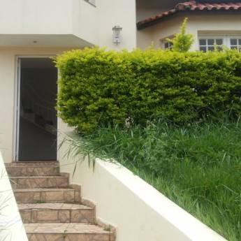 Comprar o produto de Casa - V. Assunção em Aluguel - Casas pela empresa Ideal Imóveis em Botucatu, SP por Solutudo