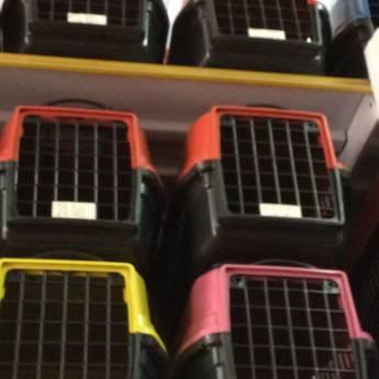 Comprar o produto de Transportadoras de vários tamanhos  em A Classificar em Botucatu, SP por Solutudo