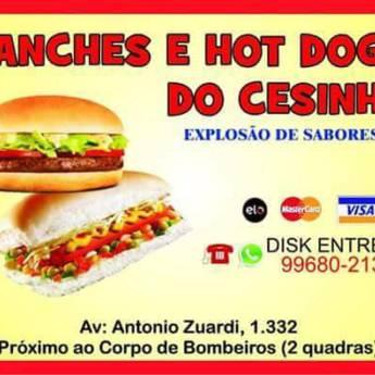 Comprar o produto de Agora o cesinha Hot Dog Tambem tem Lanches em Alimentos e Bebidas em Assis, SP por Solutudo