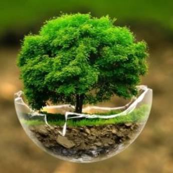 Comprar o produto de Serviços Ambientais em Outros Serviços em Jundiaí, SP por Solutudo