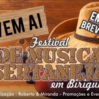 Comprar o produto de Em breve Festival de Música Sertaneja em Negócios em Birigui, SP por Solutudo