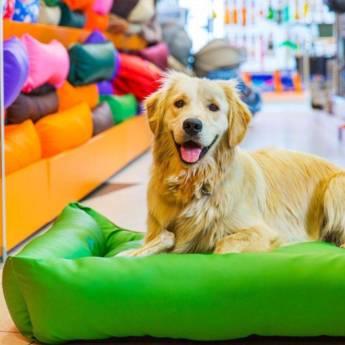 Comprar o produto de Pet Shop em Aqui você encontra: em Atibaia, SP por Solutudo