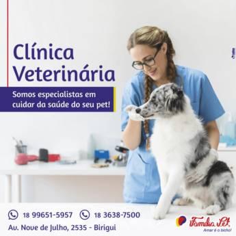 Comprar o produto de Clínica Veterinária em Veterinário em Birigui, SP por Solutudo
