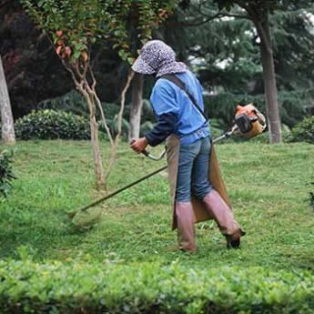 Comprar o produto de Jardineiro em Casa, Móveis e Decoração em Aracaju, SE por Solutudo