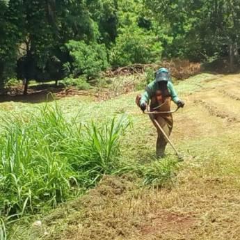 Comprar o produto de Roçada de terreno em Outros Serviços em Atibaia, SP por Solutudo