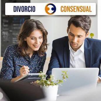 Comprar o produto de Divórcio Consensual  em Advocacia em Foz do Iguaçu, PR por Solutudo