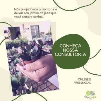Comprar produto Consultoria   Presencial e Online em Paisagismo pela empresa Mais Verde Jardins em Bauru, SP
