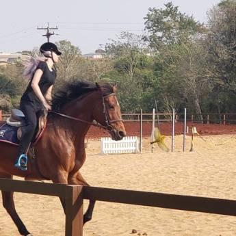 Comprar o produto de Aula de Equitação em Equitação pela empresa Horsinho Centro Equestre em Foz do Iguaçu, PR por Solutudo
