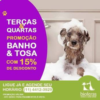 Comprar o produto de Terças e Quartas: Banho e Tosa com 15% de desconto! em Ofertas em Atibaia, SP por Solutudo