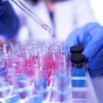 Comprar o produto de Infectologia em Infectologia em Botucatu, SP por Solutudo