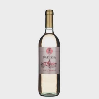 Comprar produto Vinho Badissa Pinot Grigio Rose em Vinhos pela empresa Adega Gold SM - República Argentina em Foz do Iguaçu, PR