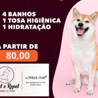 Comprar o produto de Promoções de Banho e Tosa em Pet Shop em Botucatu, SP por Solutudo