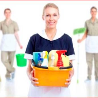 Comprar o produto de Limpeza  em Domésticas em Botucatu, SP por Solutudo