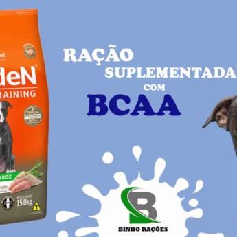 Comprar o produto de Ração Suplementada com BCAA em Ração para Cachorros em Botucatu, SP por Solutudo