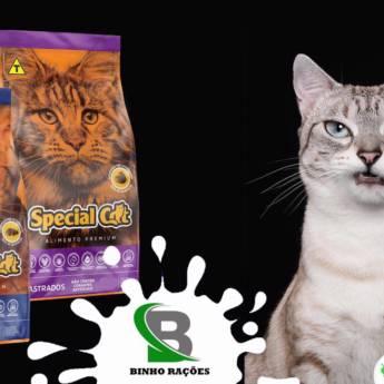 Comprar o produto de Ração Special Cat em Ração para Gatos em Botucatu, SP por Solutudo