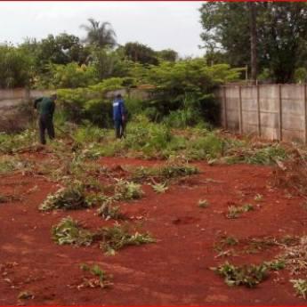 Comprar produto Limpeza de Terreno em Jardinagem pela empresa Pereira Limpeza de Terrenos em Geral em Botucatu, SP