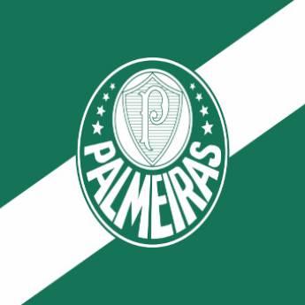 Comprar o produto de Bandeira do Palmeiras em Bandeiras em Birigui, SP por Solutudo