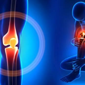 Comprar produto Ortopedia e Traumatologia e Cirurgia de Joelho em Ortopedia e Traumatologia pela empresa Joel Chiloff em Botucatu, SP