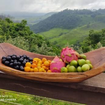 Comprar o produto de Caipirinhas  em Drinks em Botucatu, SP por Solutudo