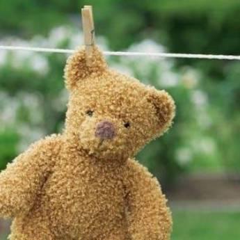Comprar o produto de Lavar Urso de Pelúcia em Outros Serviços em Foz do Iguaçu, PR por Solutudo