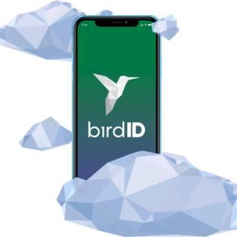 Comprar o produto de Bird ID Recarga com 50 transações  em Certificação Digital em Botucatu, SP por Solutudo