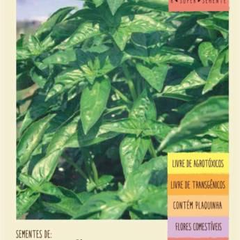Comprar o produto de semente manjericão basilicão  em A Classificar em Botucatu, SP por Solutudo